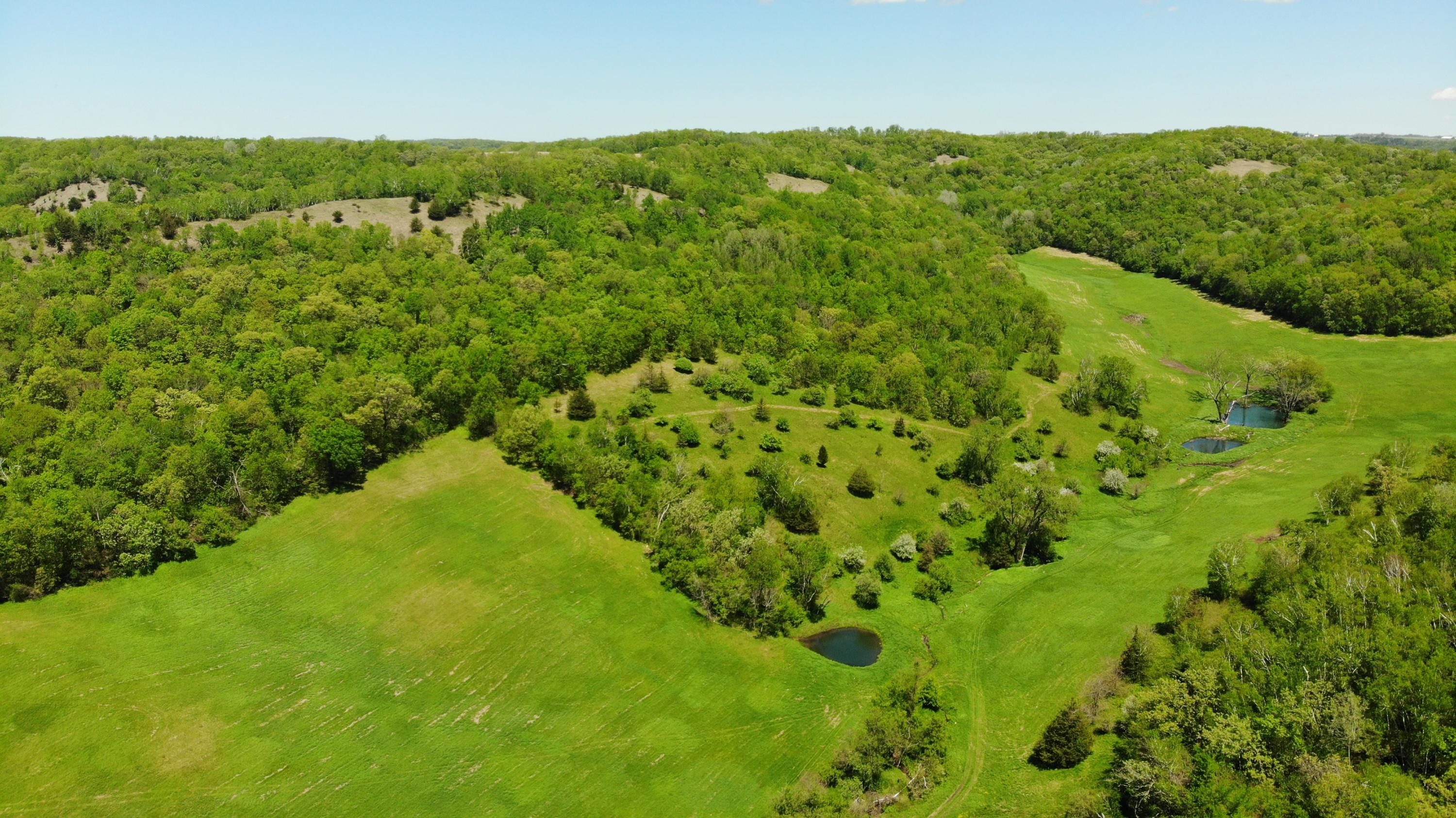 12xxx County Highway F, Wells, Wisconsin 54648, ,Vacant Land,For Sale,County Highway F,1624740