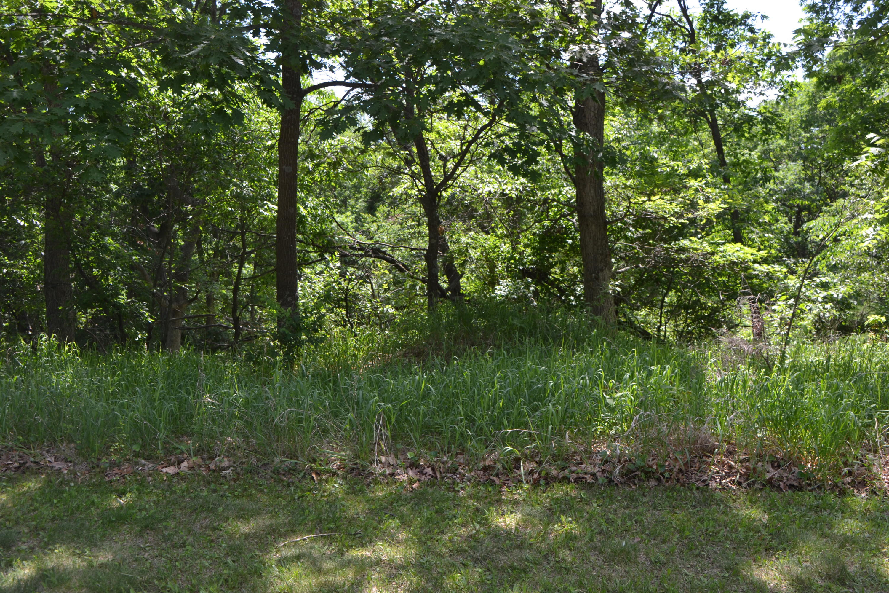 Lt91 Golf Ridge Cir, Mecan, Wisconsin 53949, ,Vacant Land,For Sale,Golf Ridge Cir,1645354
