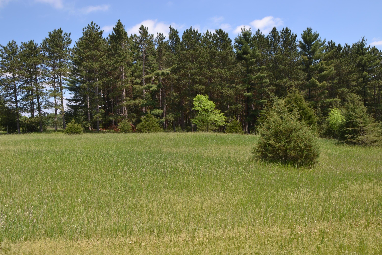 Lt85 Golf Ridge Rd, Mecan, Wisconsin 53949, ,Vacant Land,For Sale,Golf Ridge Rd,1649898