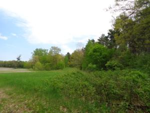 Property for sale at Lt0 South Chase Rd, Sobieski,  Wisconsin 54171
