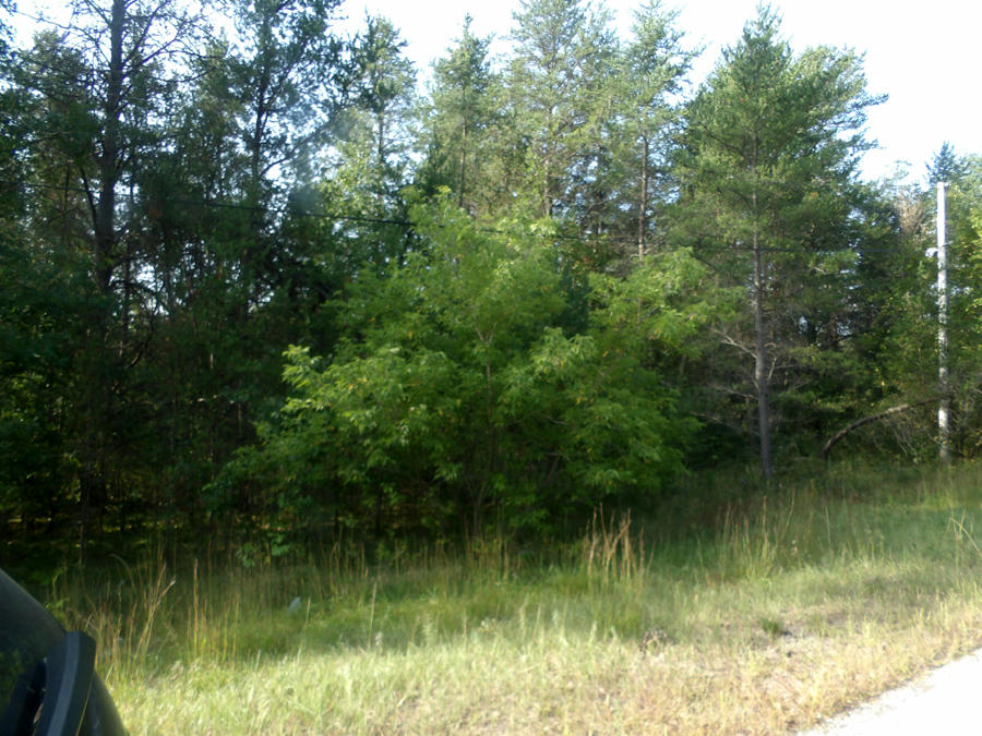 Lt 11 2nd. Ave., Crivitz, Wisconsin 54114, ,Vacant Land,For Sale,2nd. Ave.,1663443