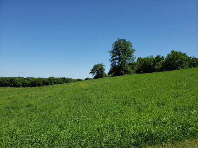 Lt4 Main St, Iron Ridge, Wisconsin 53035, ,Vacant Land,For Sale,Main St,1674735