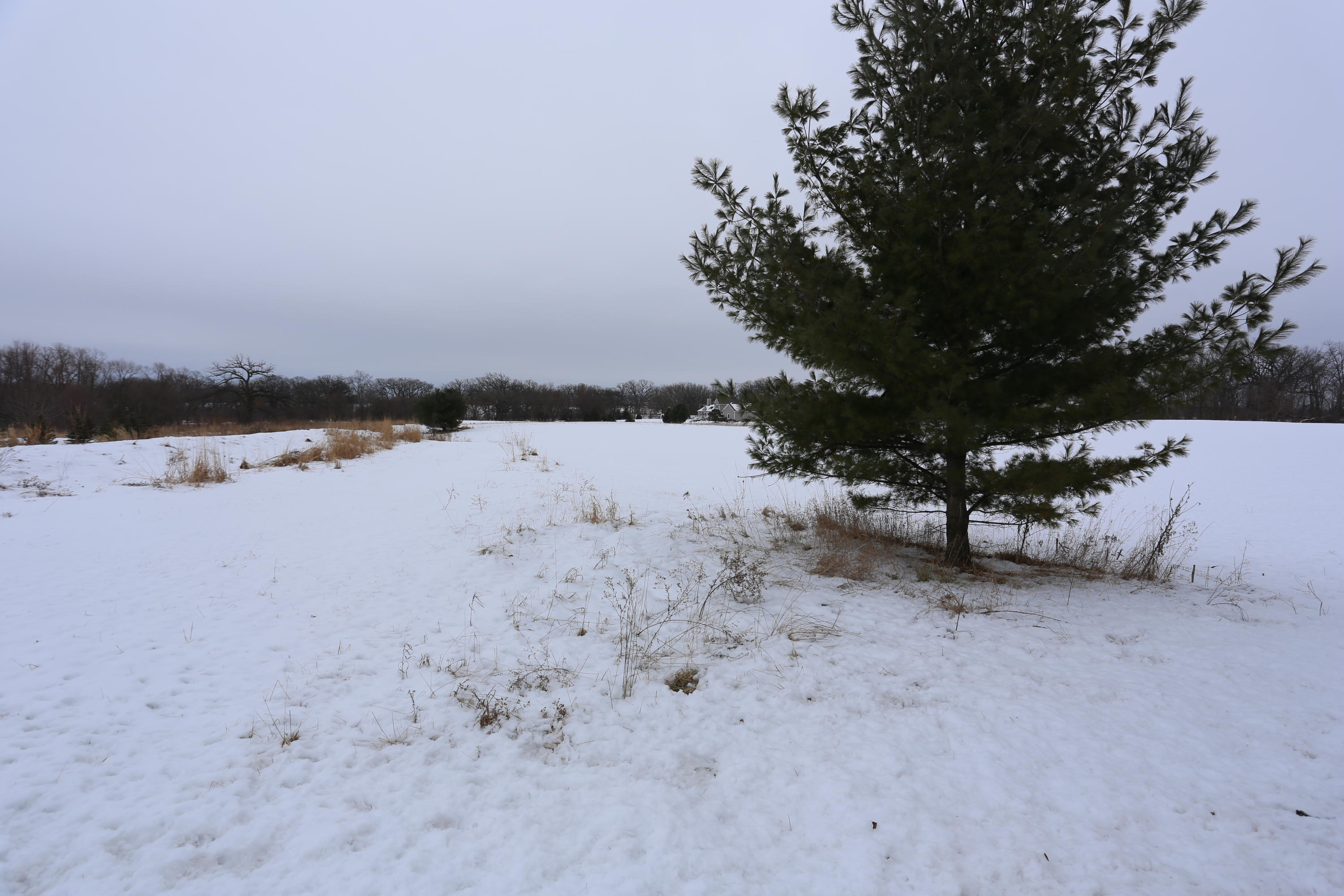 Lt6 County Highway MB, Bristol, Wisconsin 53104, ,Vacant Land,For Sale,County Highway MB,1675038
