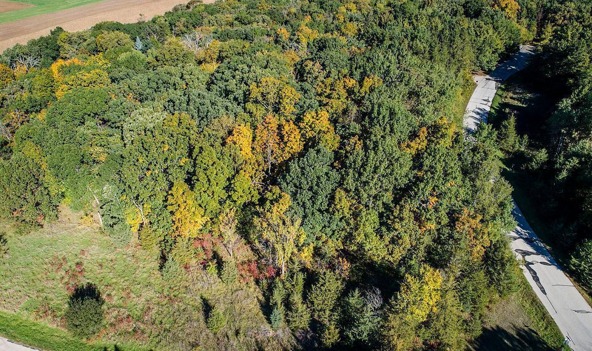 Lt2 Pine Ridge Ct, Ottawa, Wisconsin 53118, ,Vacant Land,For Sale,Pine Ridge Ct,1675908