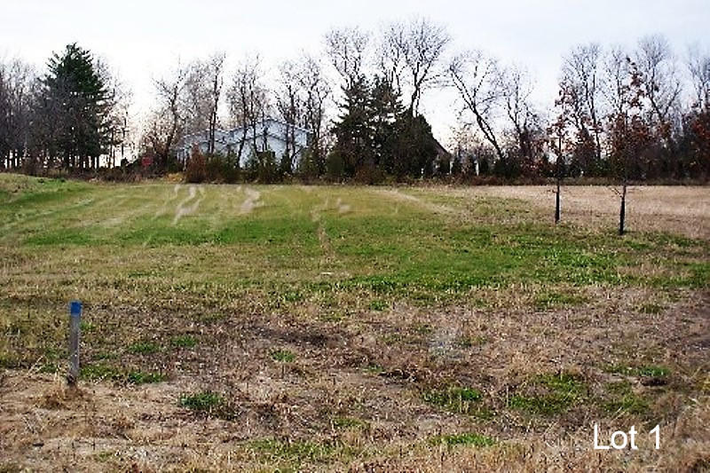Lt1 Eastview Dr, Sharon, Wisconsin 53585, ,Vacant Land,For Sale,Eastview Dr,1678242
