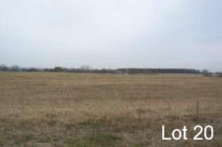 Lt20 Eastview Dr, Sharon, Wisconsin 53585, ,Vacant Land,For Sale,Eastview Dr,1678257