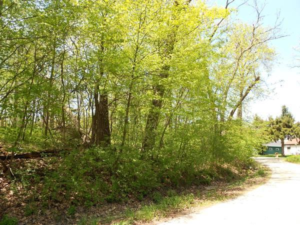 Lt13 Woodlawn Dr, Delavan, Wisconsin 53115, ,Vacant Land,For Sale,Woodlawn Dr,1681610