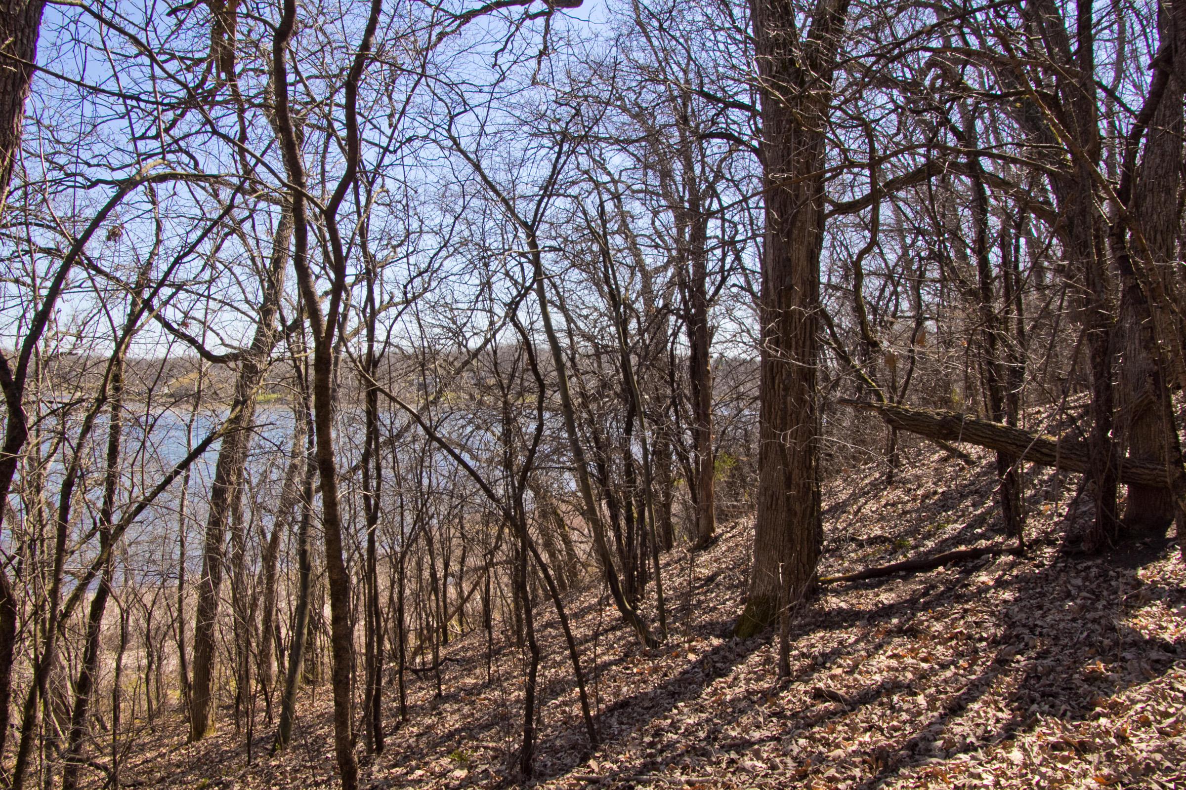 Sloped Lakefront Lot