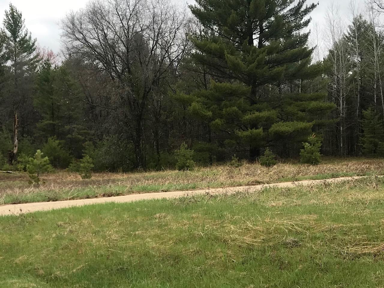 Lt10 Three Rivers Rd, Wausaukee, Wisconsin 54177, ,Vacant Land,For Sale,Three Rivers Rd,1693036