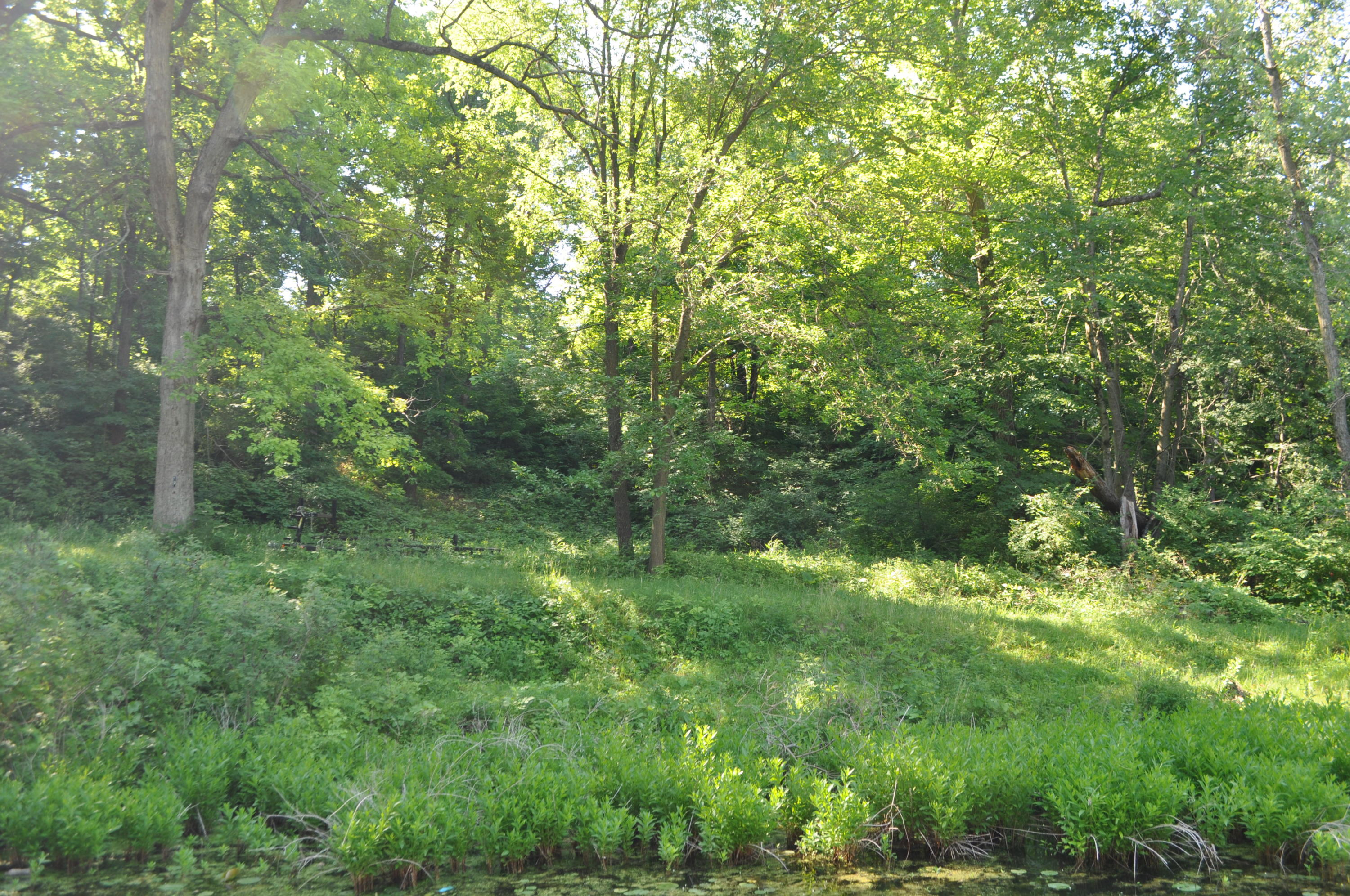 Lt0 Lost Nation Rd, La Grange, Wisconsin 53121, ,Vacant Land,For Sale,Lost Nation Rd,1695264