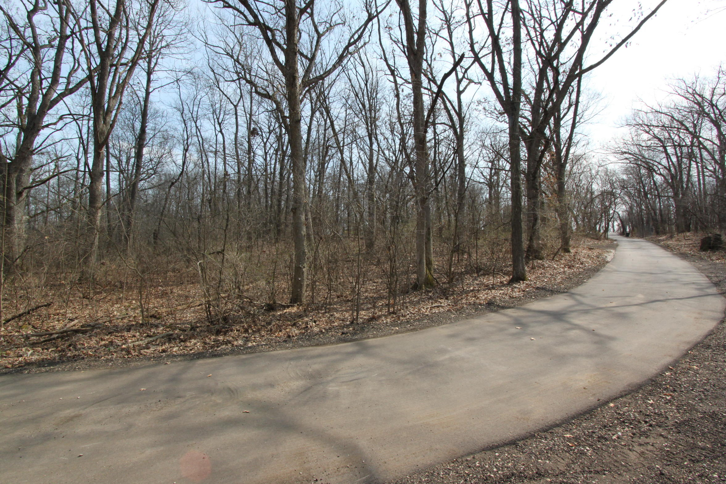 Lt7 North Rd, La Grange, Wisconsin 53121, ,Vacant Land,For Sale,North Rd,1699078