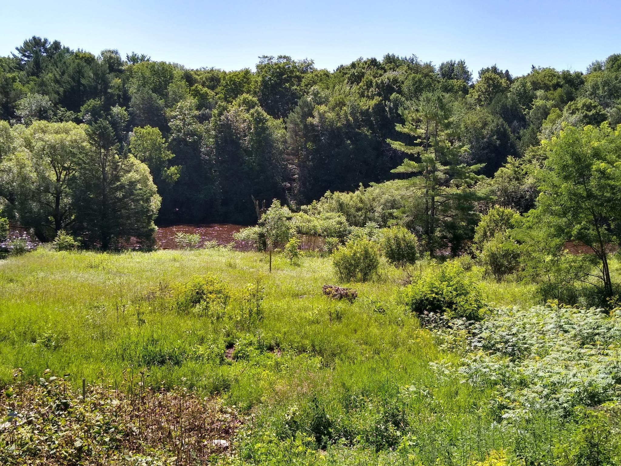 W2299 State Road 22, Green Valley, Wisconsin 54124, ,Vacant Land,For Sale,State Road 22,1699617