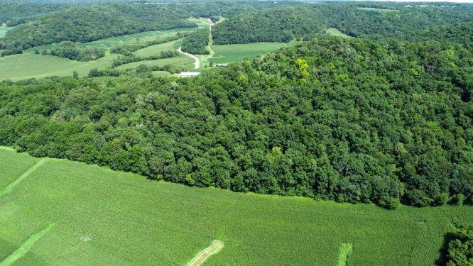 0 Holcomb Coulee RD, Arcadia, Wisconsin 54612, ,Vacant Land,For Sale,Holcomb Coulee RD,1700104