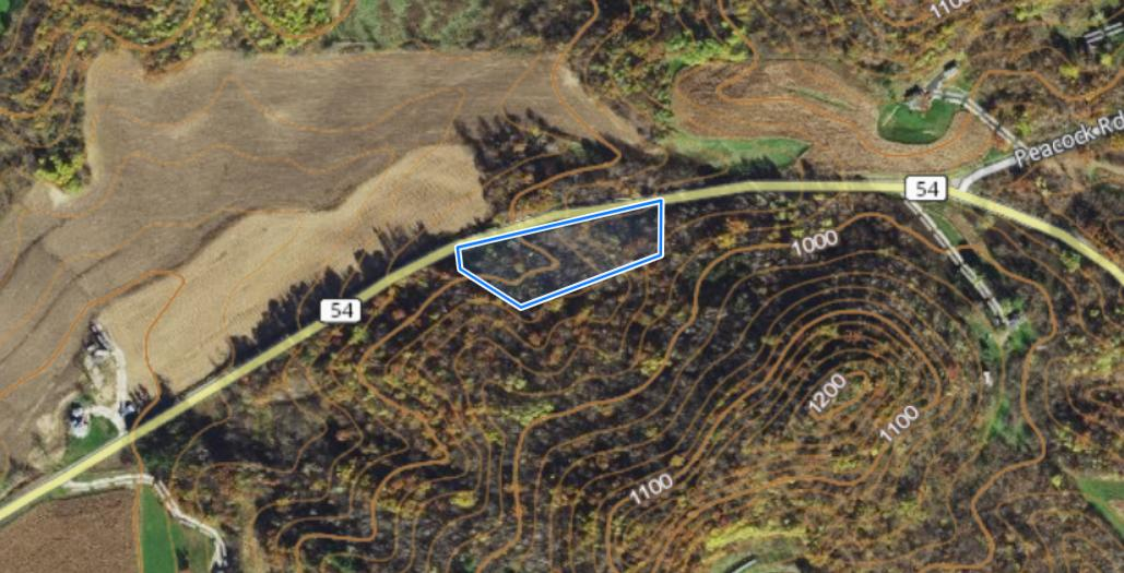 0 Hwy 54, Gale, Wisconsin 54642, ,Vacant Land,For Sale,Hwy 54,1701515