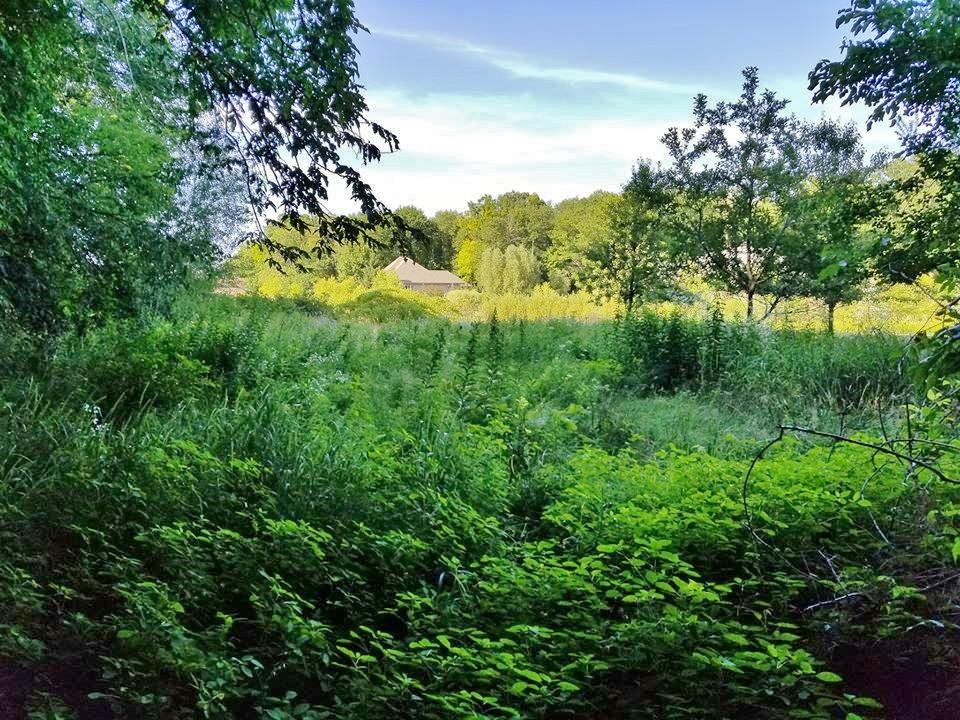 1350 Westbury Ct, Manitowoc Rapids, Wisconsin 54220, ,Vacant Land,For Sale,Westbury Ct,1702213