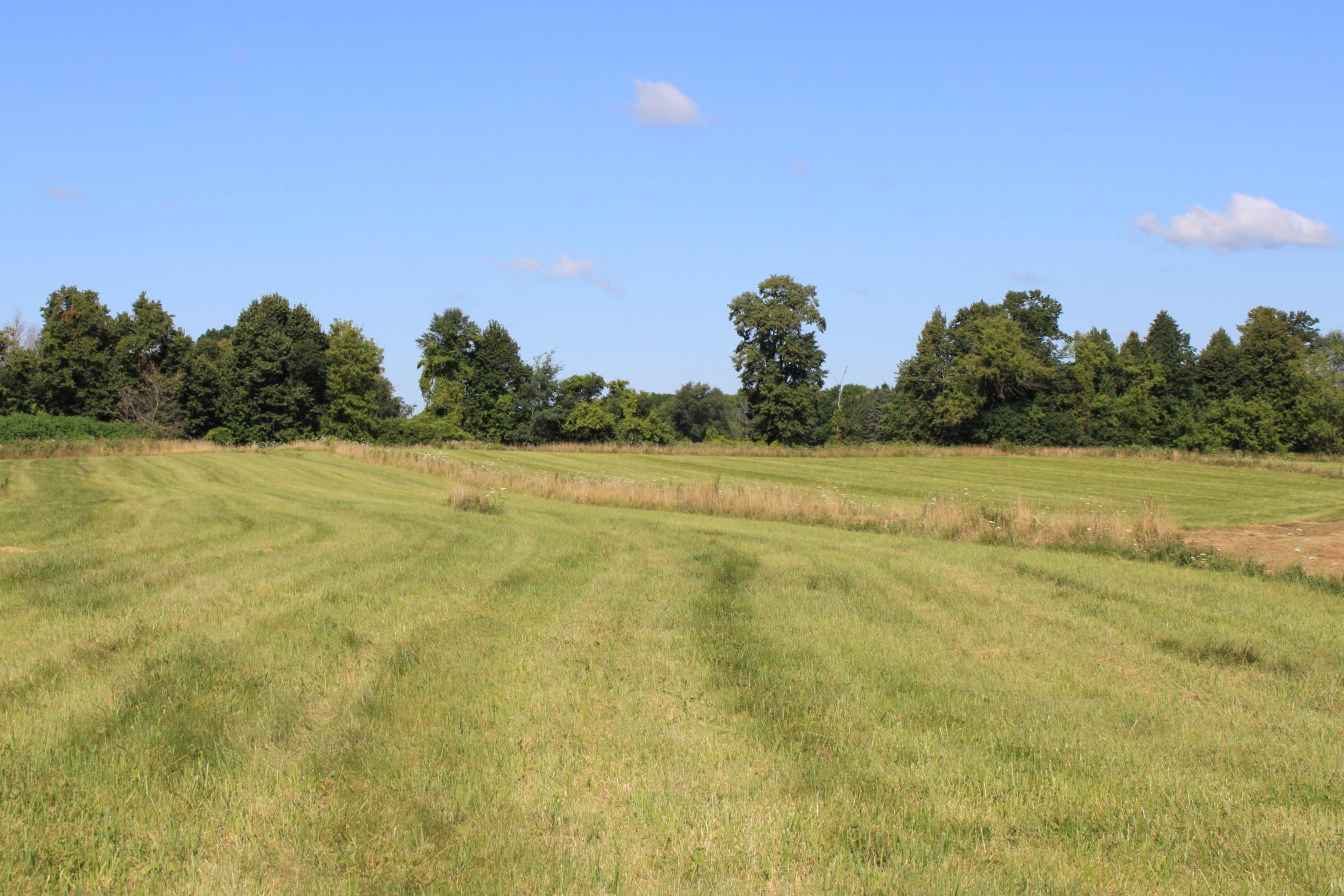 Lt1 Meadow View Estates, Cedarburg, Wisconsin 53012, ,Vacant Land,For Sale,Meadow View Estates,1703142