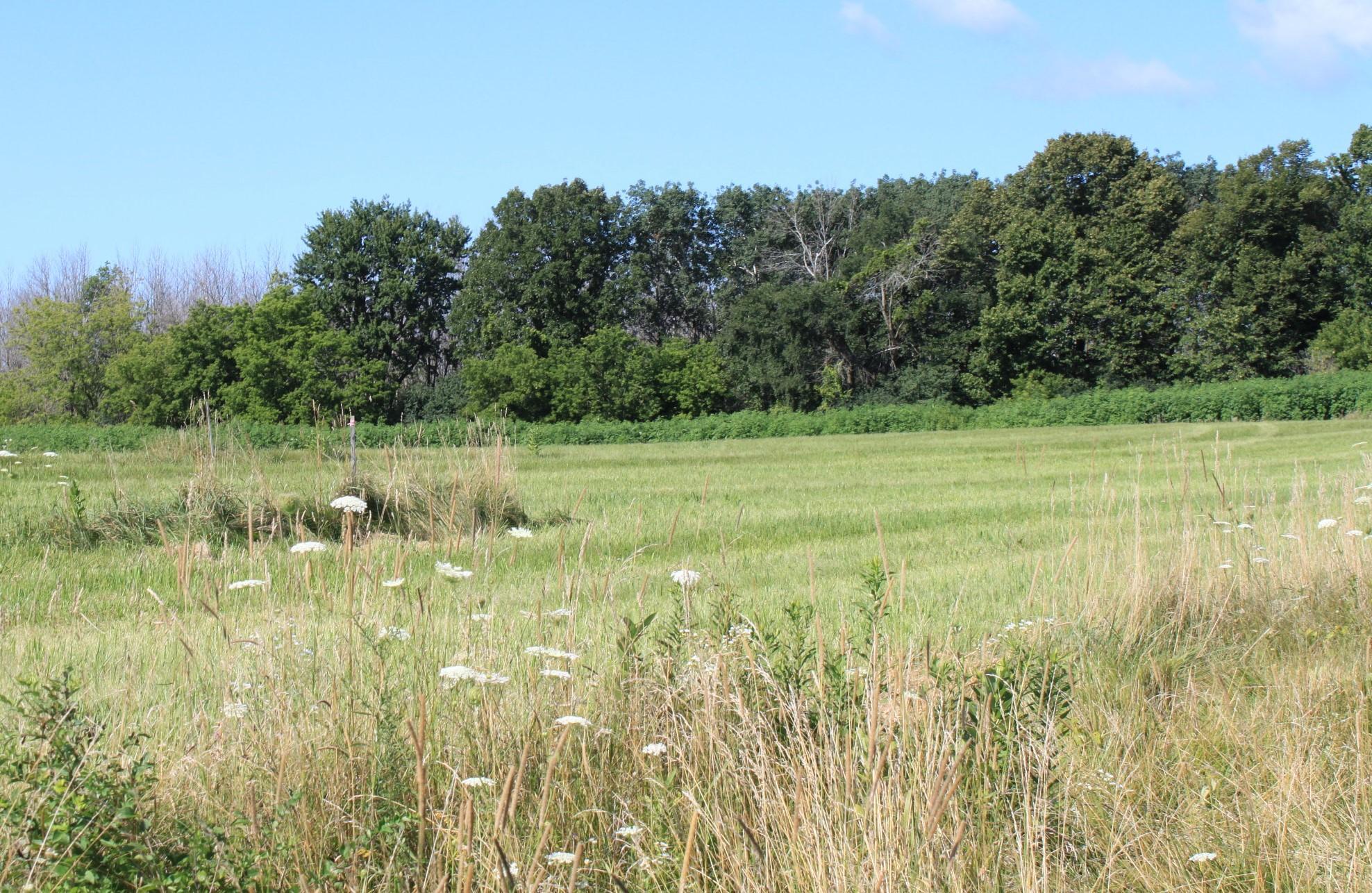 Lt4 Meadow View Estates, Cedarburg, Wisconsin 53012, ,Vacant Land,For Sale,Meadow View Estates,1703145