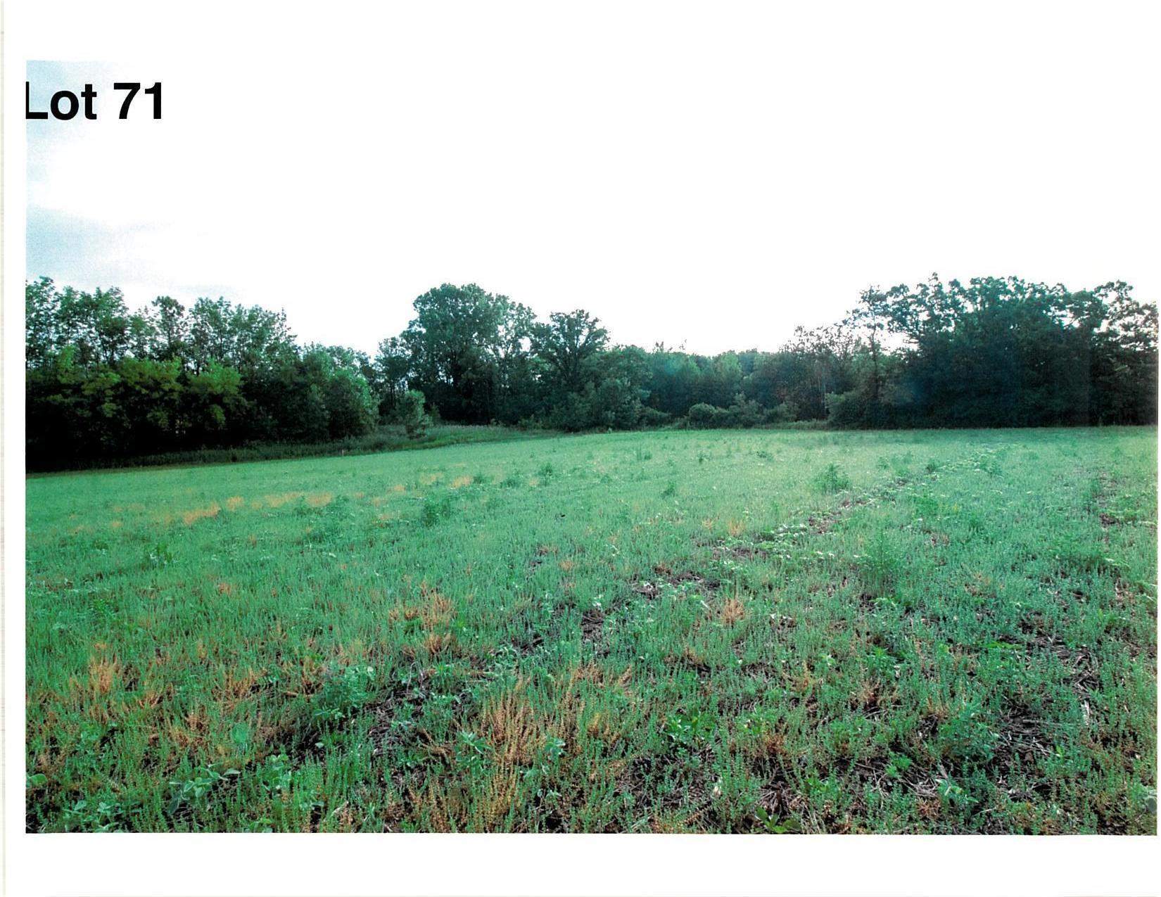 Lot 71 The Clearings, Kohler, Wisconsin 53044, ,Vacant Land,For Sale,The Clearings,1703127