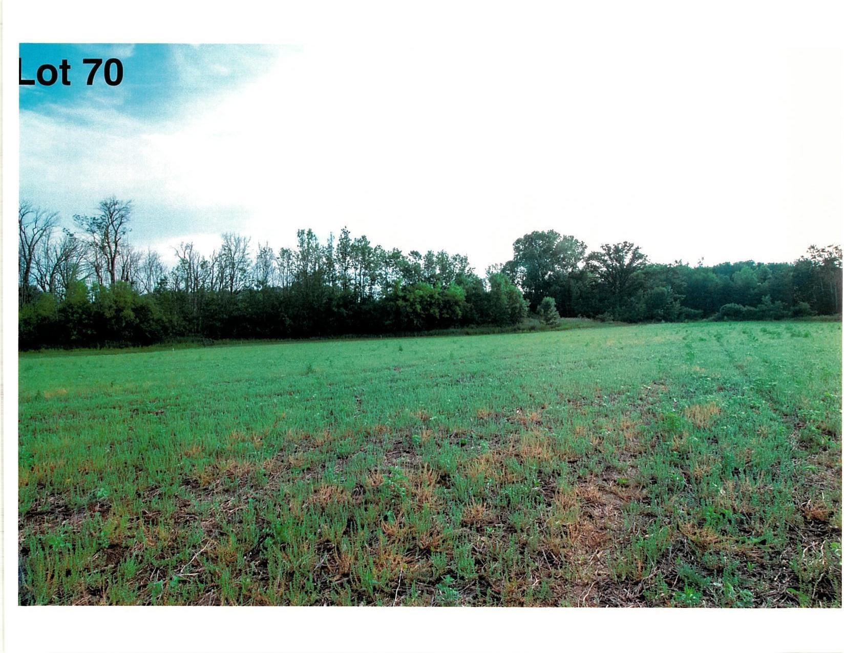 Lot 70 The Clearings, Kohler, Wisconsin 53044, ,Vacant Land,For Sale,The Clearings,1703126