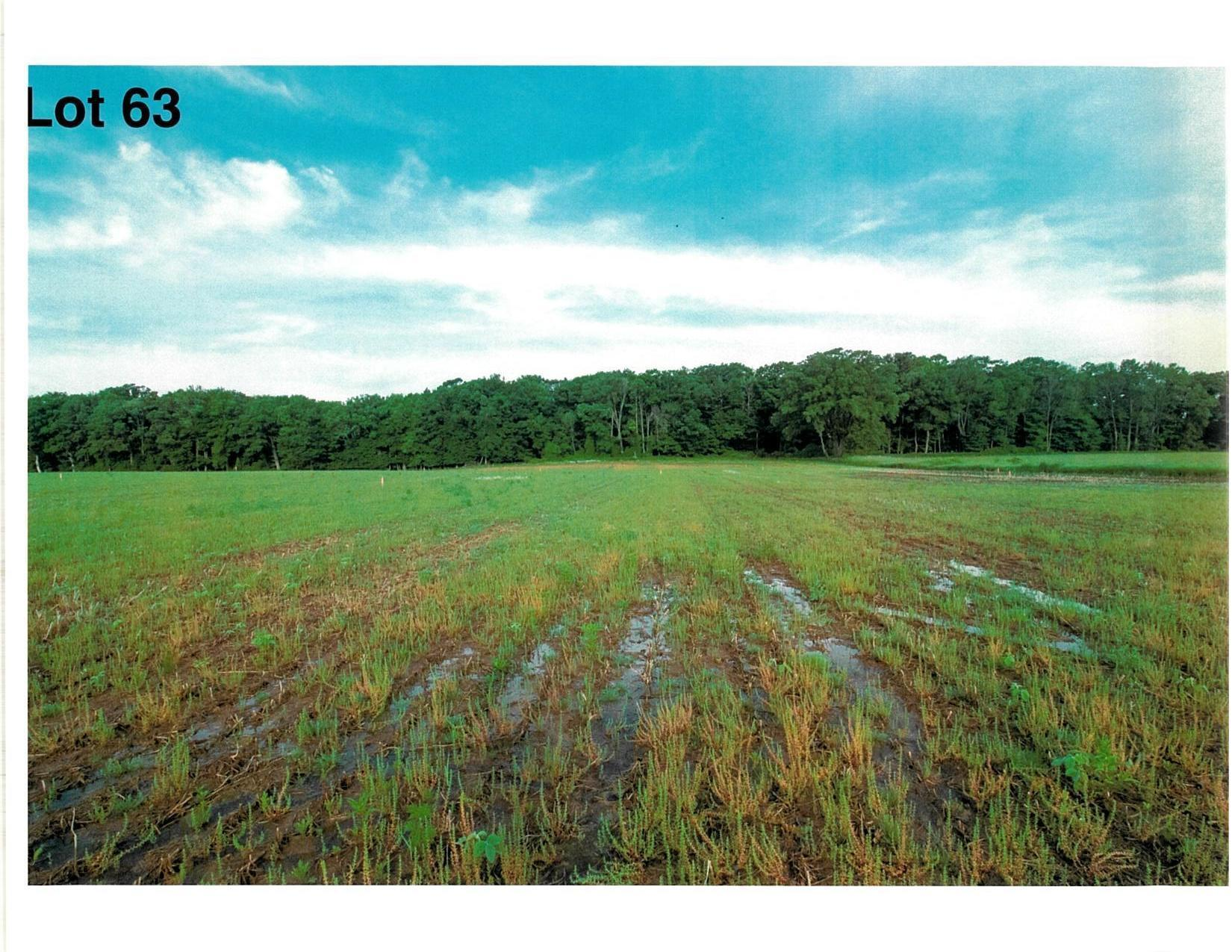 Lot 63 The Clearings, Kohler, Wisconsin 53044, ,Vacant Land,For Sale,The Clearings,1703120