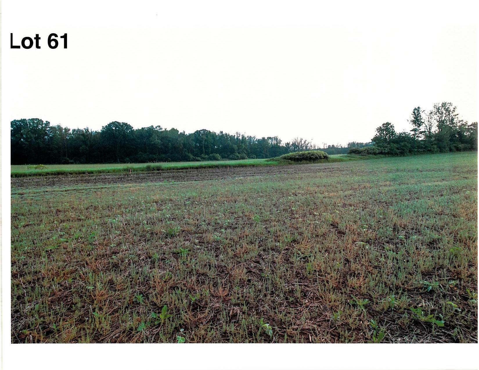 Lot 61 The Clearings, Kohler, Wisconsin 53044, ,Vacant Land,For Sale,The Clearings,1703118