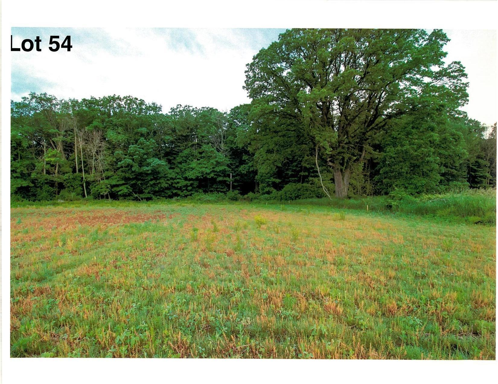 Lot 54 The Clearings, Kohler, Wisconsin 53044, ,Vacant Land,For Sale,The Clearings,1703113