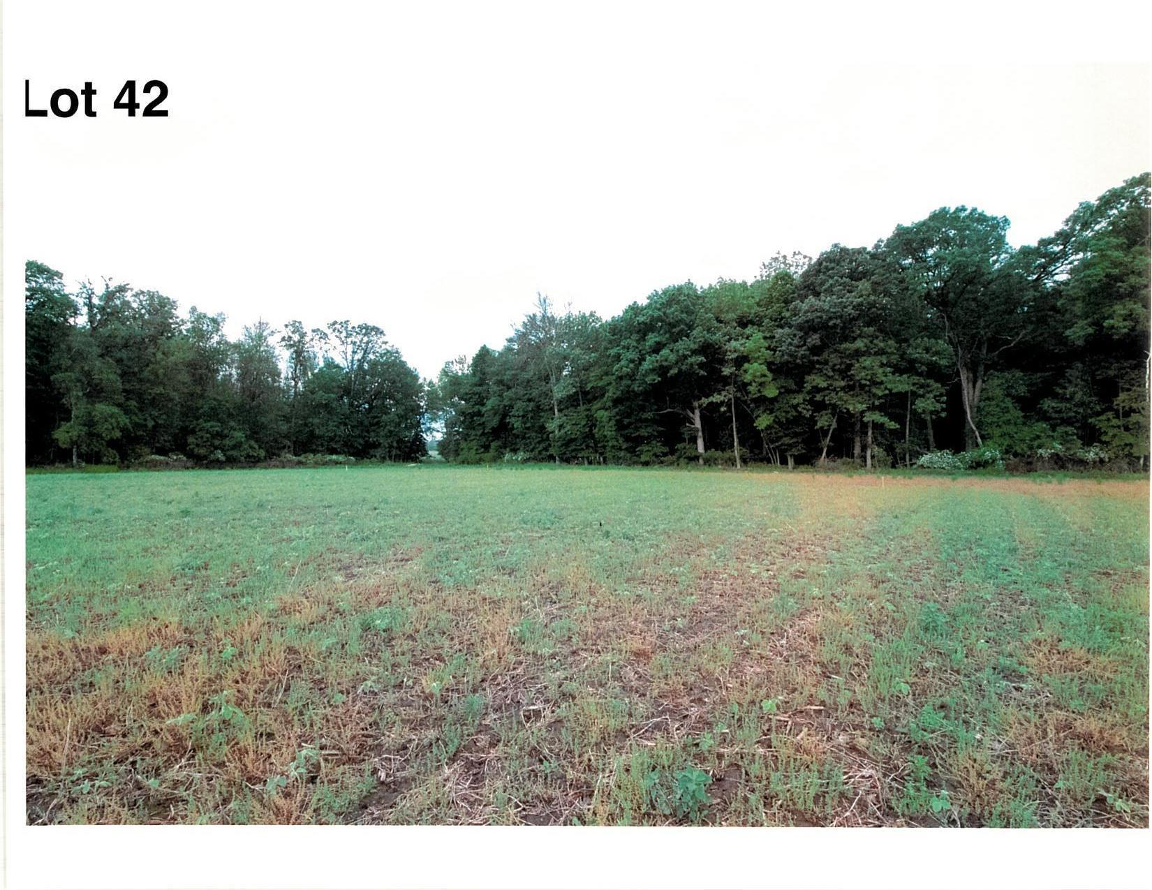 Lot 42 The Clearings, Kohler, Wisconsin 53044, ,Vacant Land,For Sale,The Clearings,1703103