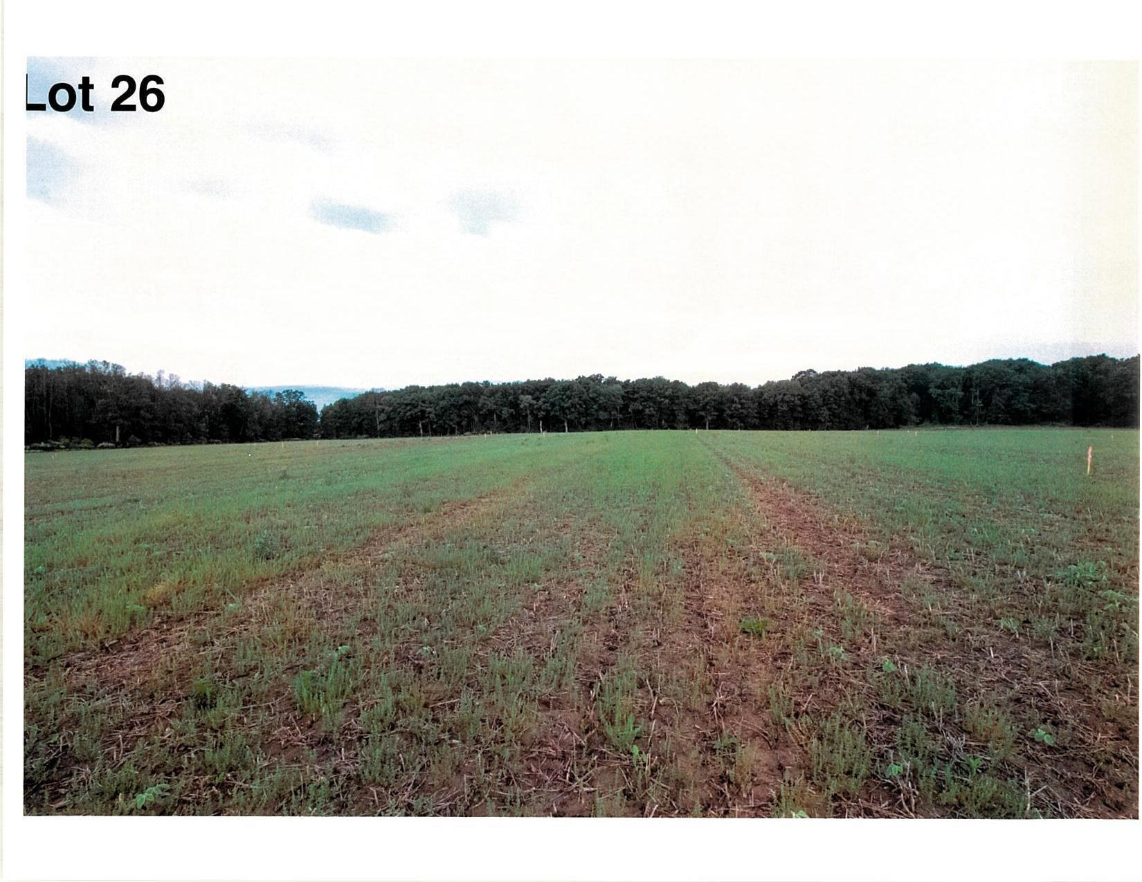 Lot 26 The Clearings, Kohler, Wisconsin 53044, ,Vacant Land,For Sale,The Clearings,1703085