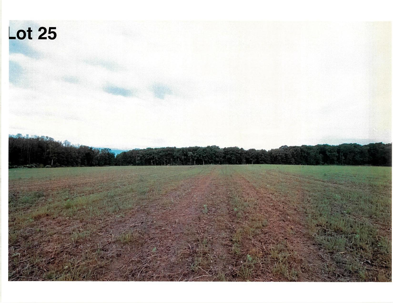 Lot 25 The Clearings, Kohler, Wisconsin 53044, ,Vacant Land,For Sale,The Clearings,1703084