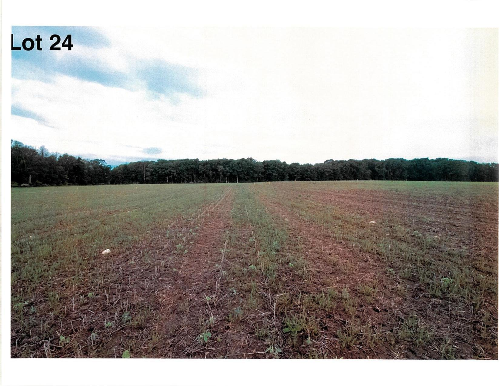 Lot 24 The Clearings, Kohler, Wisconsin 53044, ,Vacant Land,For Sale,The Clearings,1703083