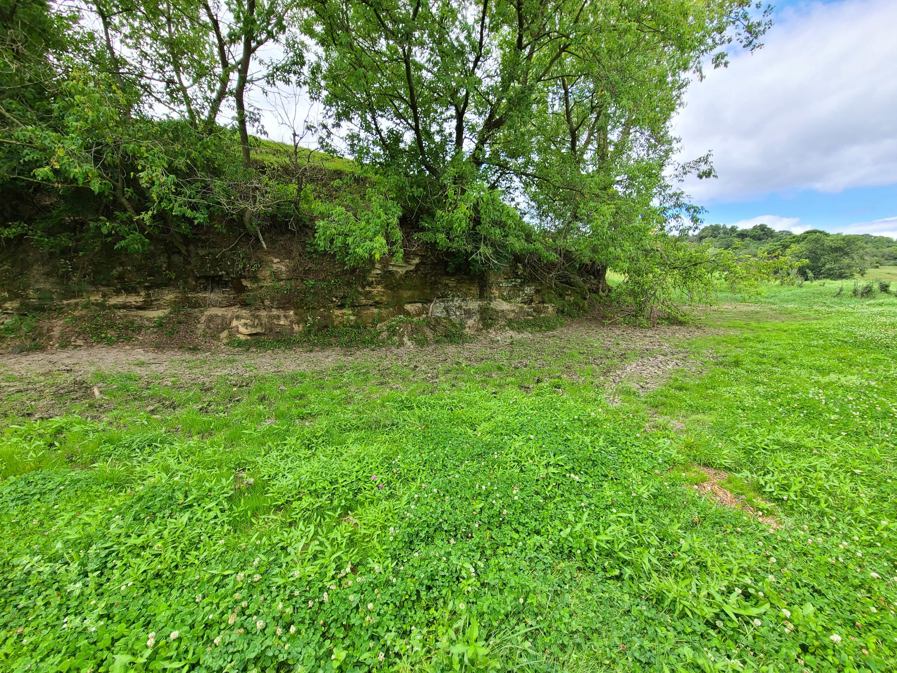 XX COUNTY HIGHWAY T, Ridgeville, Wisconsin 54648, ,Vacant Land,For Sale,COUNTY HIGHWAY T,1703357