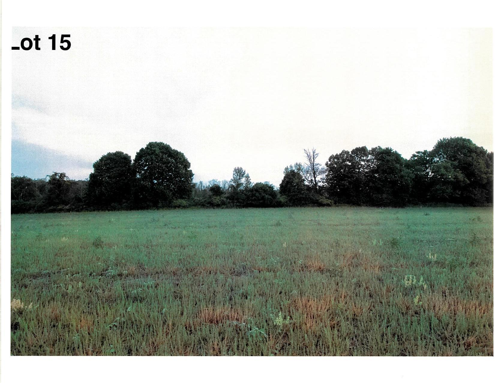 Lot 15 The Clearings, Kohler, Wisconsin 53044, ,Vacant Land,For Sale,The Clearings,1703072