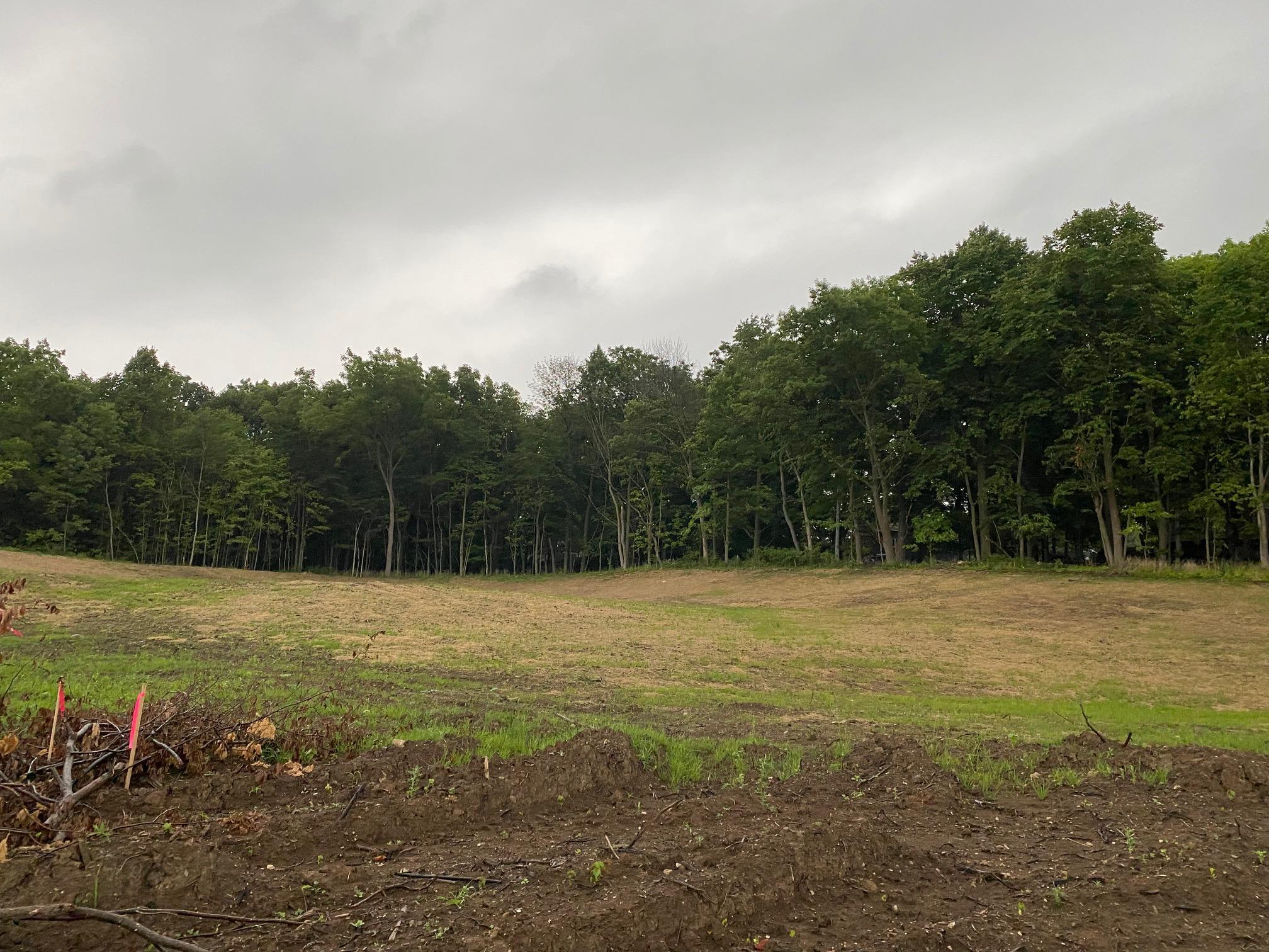 Lt1 Woodland Creek Dr, Sussex, Wisconsin 53089, ,Vacant Land,For Sale,Woodland Creek Dr,1686927