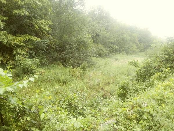 0000 Salem Ridge Rd, Webster, Wisconsin 54639, ,Vacant Land,For Sale,Salem Ridge Rd,1703733