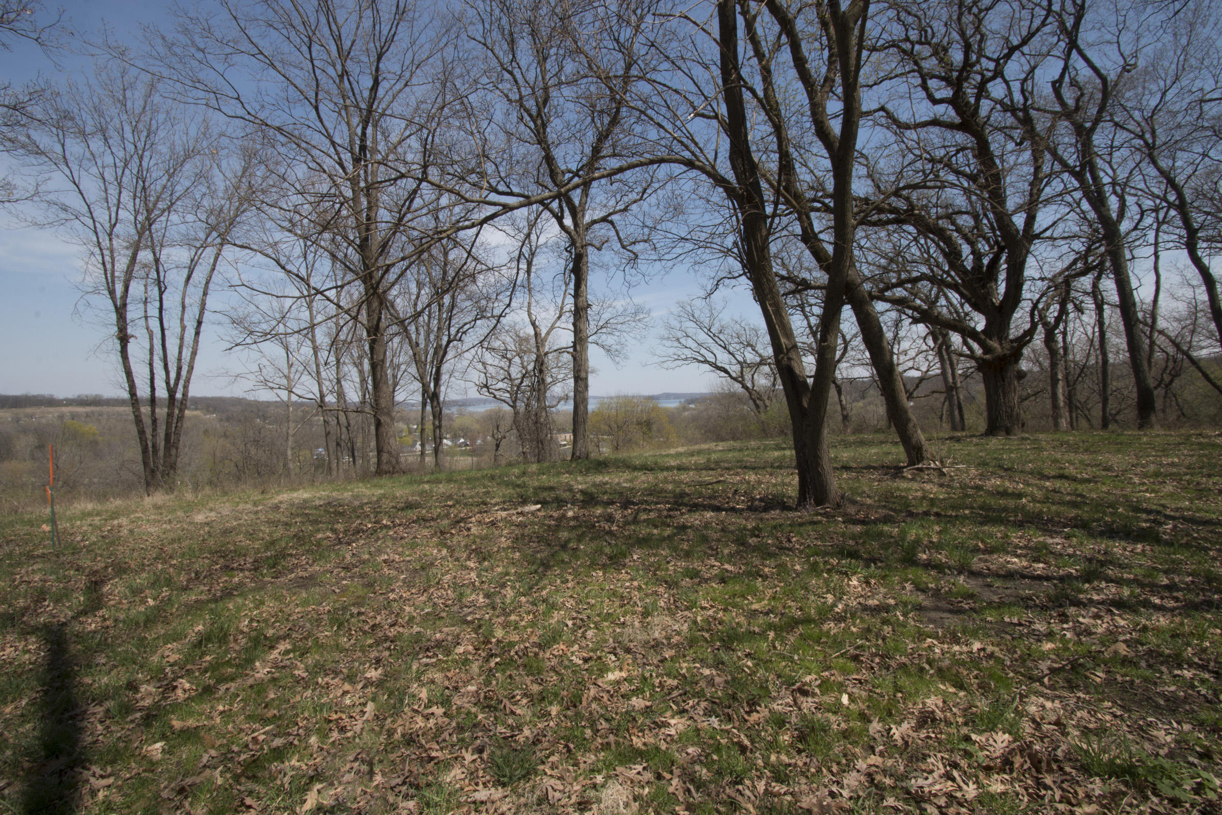 768 Bear Trap Ln, Fontana, Wisconsin 53125, ,Vacant Land,For Sale,Bear Trap Ln,1704415