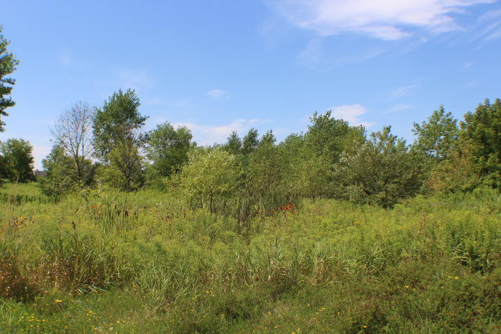 LOT 51 Hummingbird LN, Plymouth, Wisconsin 53073, ,Vacant Land,For Sale,Hummingbird LN,1704560