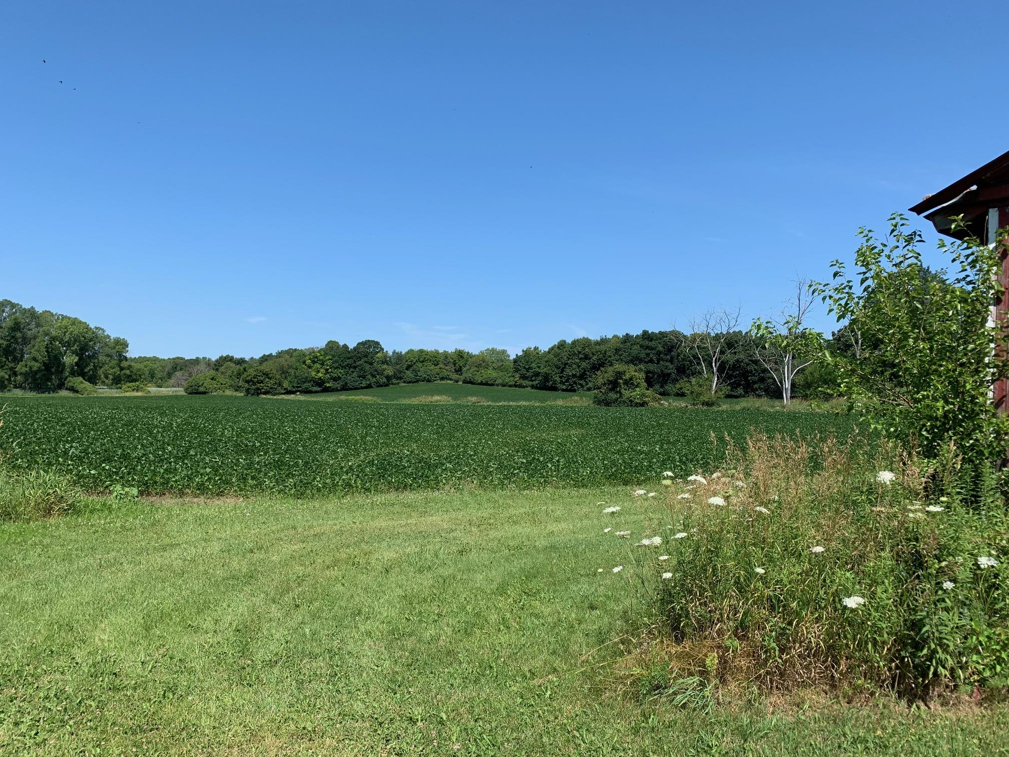 Lt0 State Road 164, Lisbon, Wisconsin 53089, ,Vacant Land,For Sale,State Road 164,1704542