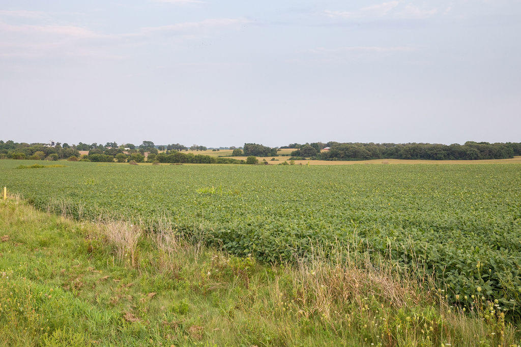 N1436 State Road 120, Linn, Wisconsin 53147, ,Vacant Land,For Sale,State Road 120,1706339