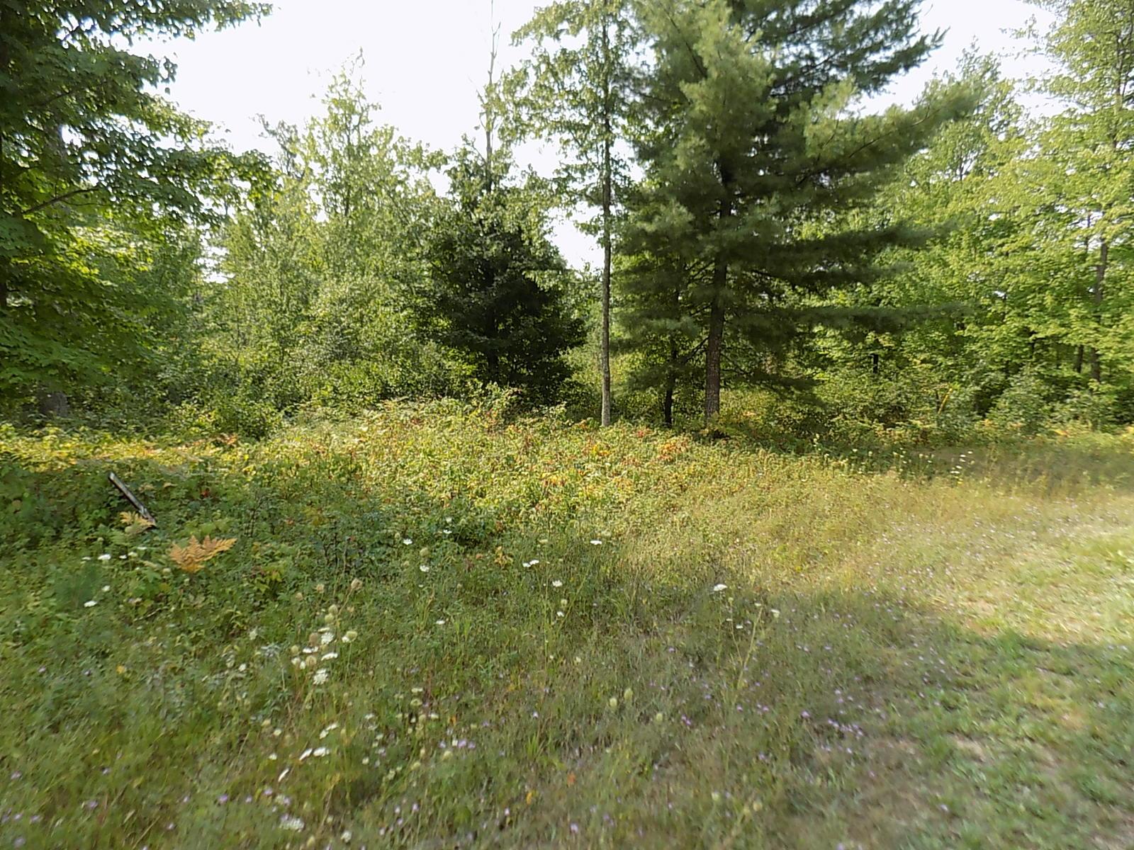 Lt15 Crimson Ln, Brazeau, Wisconsin 54161, ,Vacant Land,For Sale,Crimson Ln,1706540