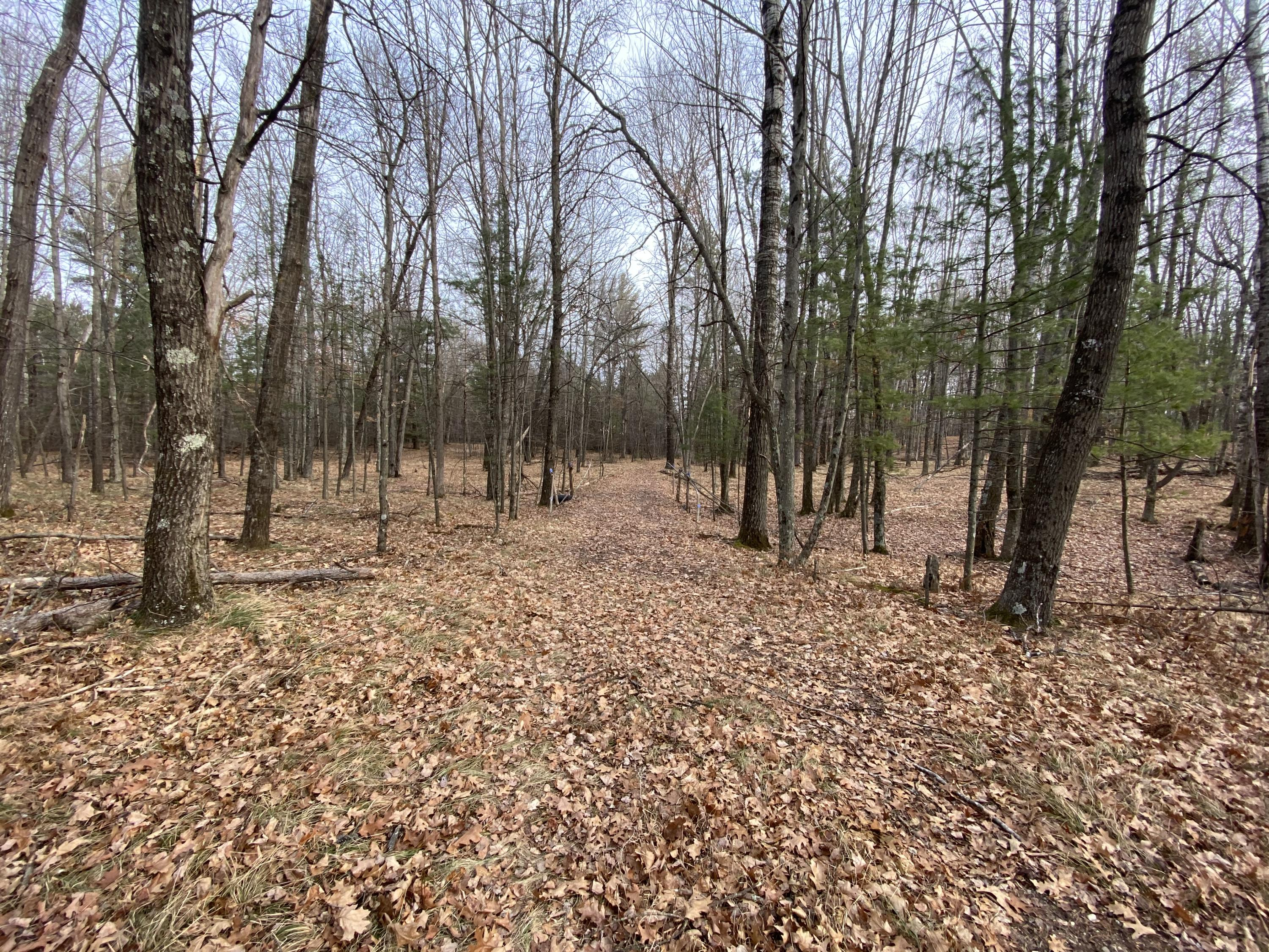 N11512 River Rd, Wausaukee, Wisconsin 54177, ,Vacant Land,For Sale,River Rd,1721702