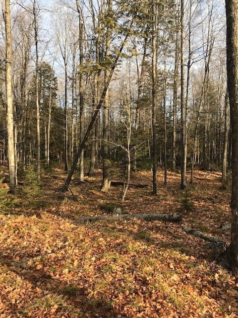 J-1 Ln, Daggett, Michigan 49821, ,Vacant Land,For Sale,Ln,1721911