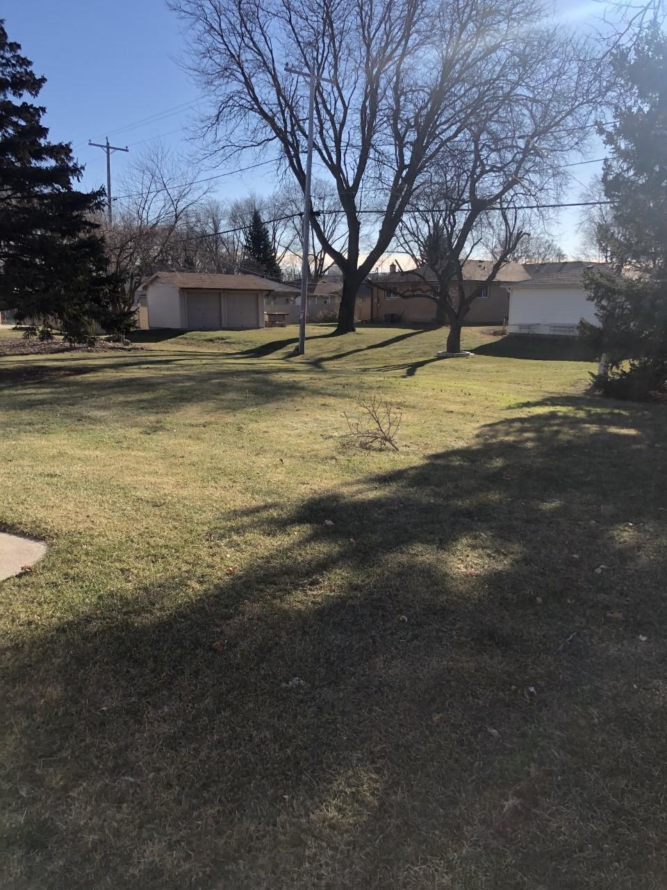 Backyard & Patio