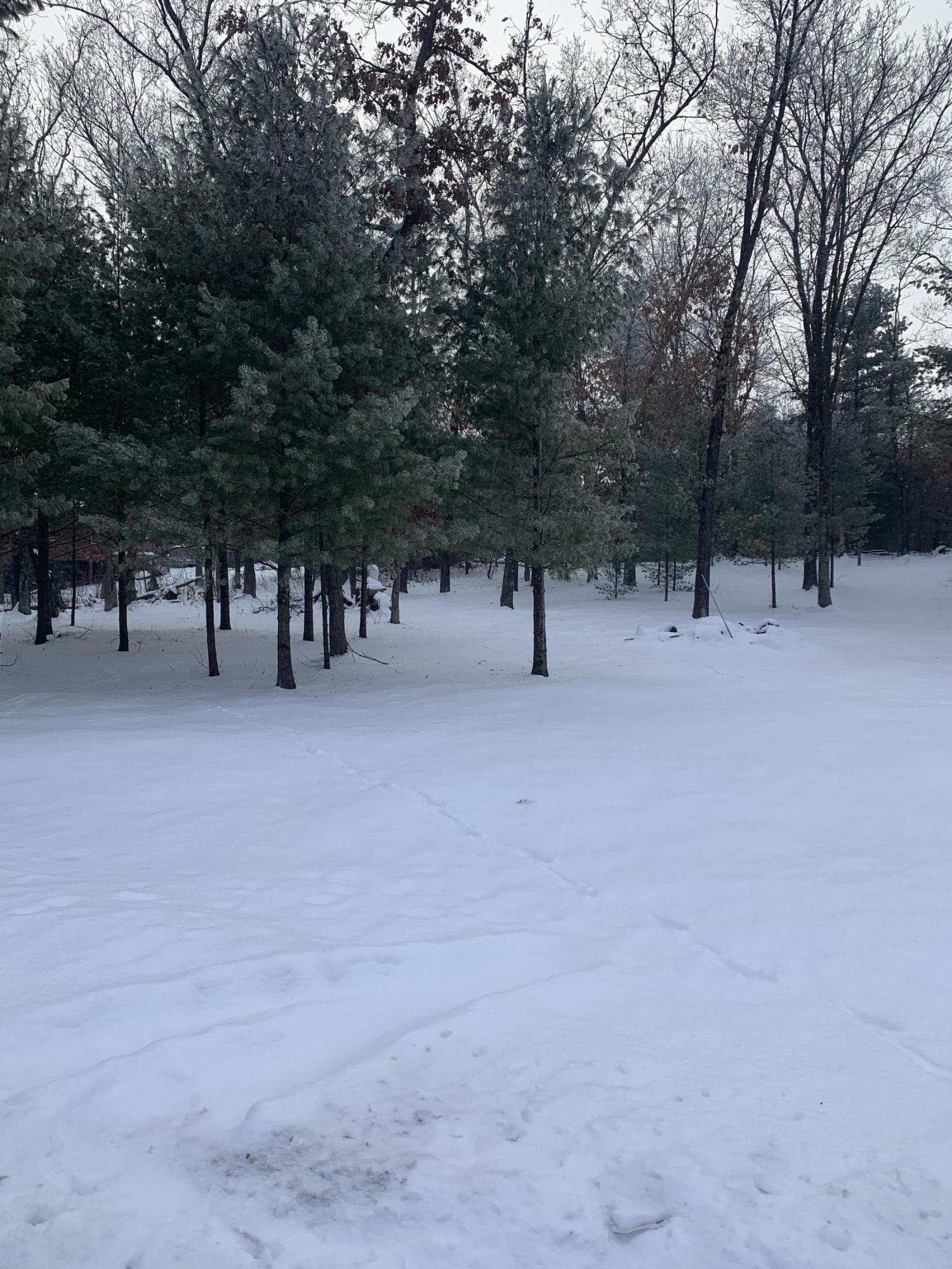 Lt71 Cypress Dr, Strongs Prairie, Wisconsin 54613, ,Vacant Land,For Sale,Cypress Dr,1722994