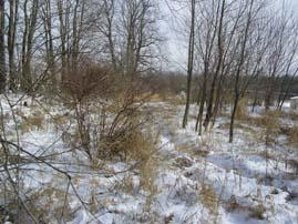 Lt8 Hickory Rd, Hustisford, Wisconsin 53034, ,Vacant Land,For Sale,Hickory Rd,1723125