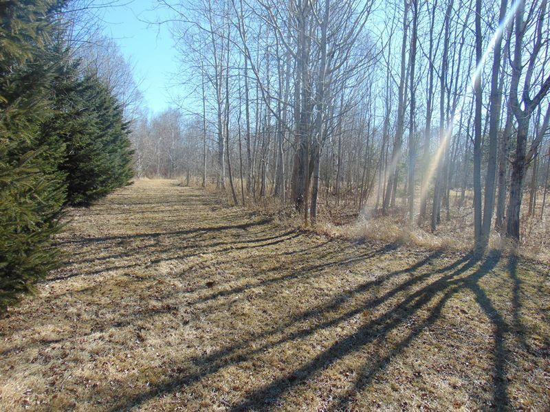 9.9 Acre Property