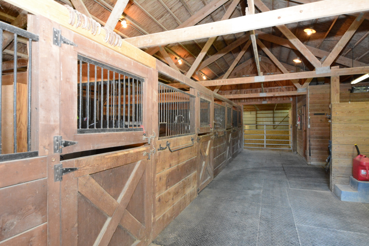 4 Horse Stalls