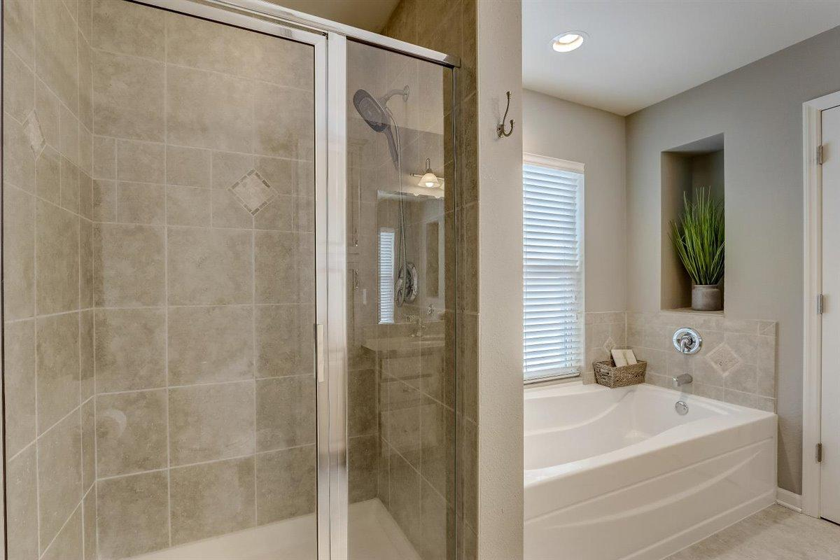 Master BA shower & tub