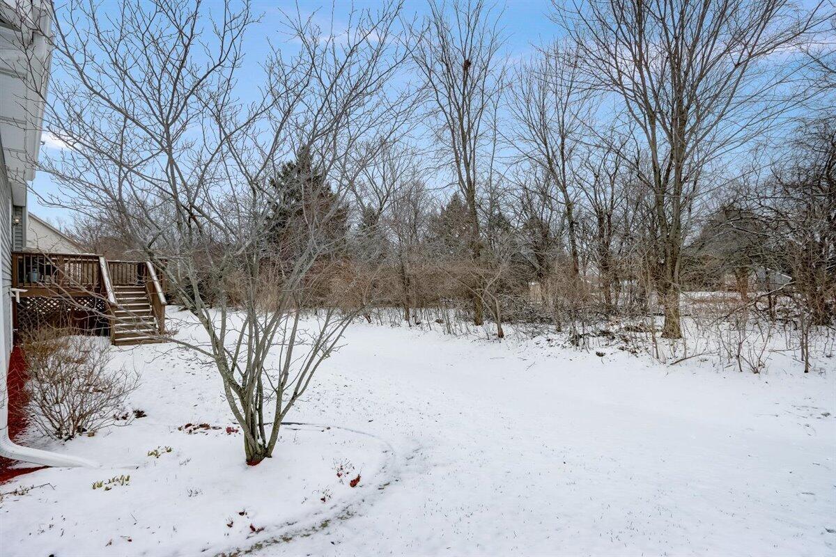 Large & private Backyard