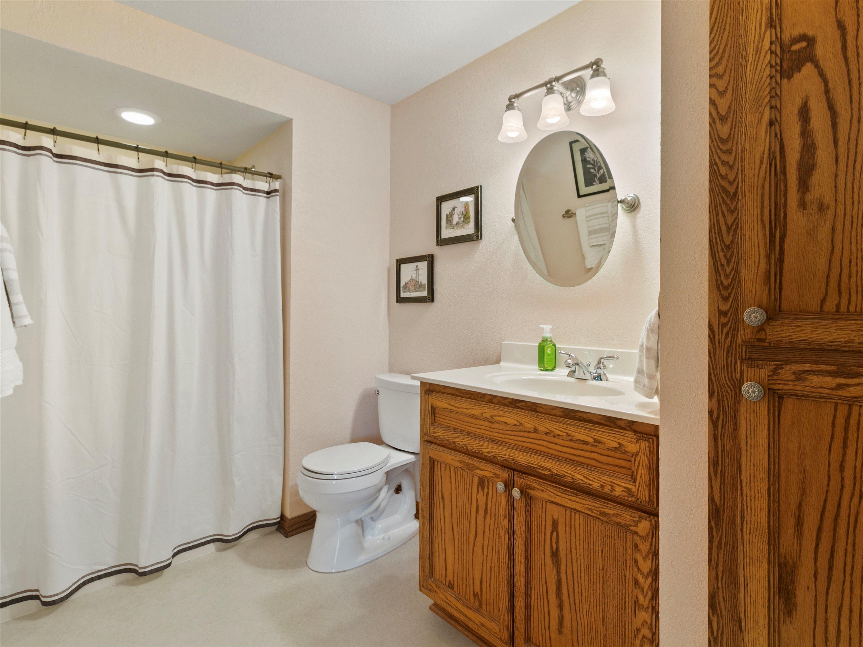 Lower Level bathrooom