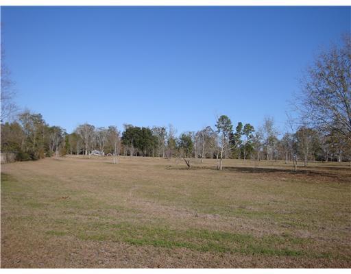 23213 Church Ave,Saucier,Mississippi 39574,Lots/Acreage/Farm,Church,247727